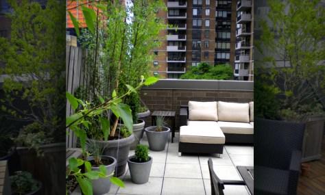 3-25 - roof garden