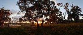Sunset on afternoon dog walk