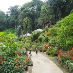 緑豊かなモン族の村