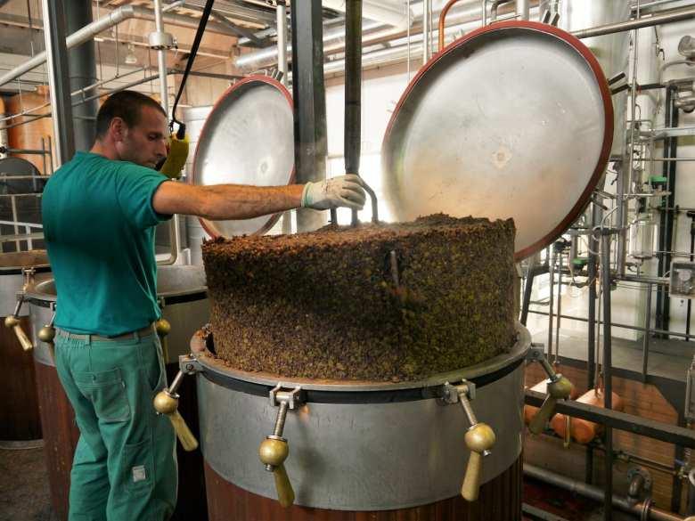 grappa-production