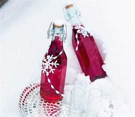 cranberry-bottle