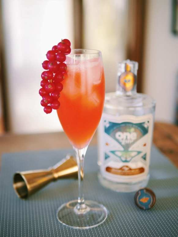 Floradora with One Gin