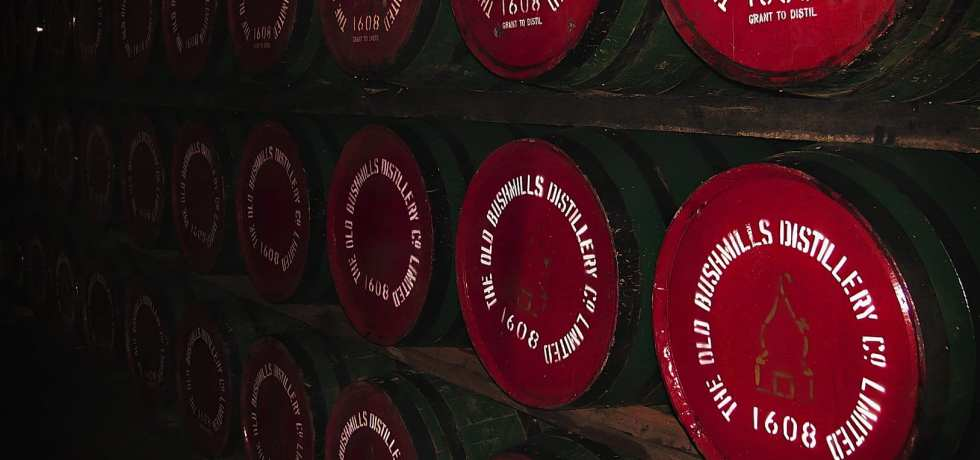 Bushmills Irish whiskey casks