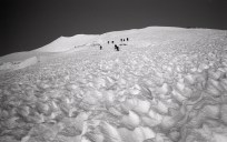 More climbers working up Mt Rainier via Disappointment Cleaver