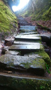 steps to glen finnich e1444596851506 169x300 - Outlander Tour 18-24 July