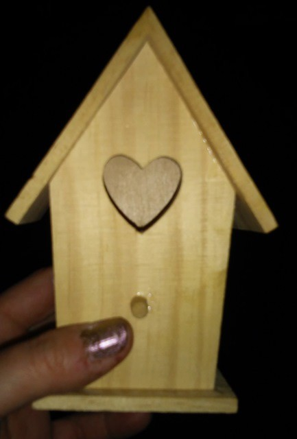 Where is Summer?  The Birds Are Angry:  Decoupage Kids Craft Bird House (1/5)