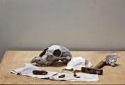 still-life-with-hammer-2012