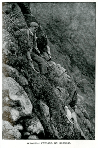 From With Nature and A Camera: Being the Adventures and Observations of a Field Naturalist and an Animal Photographer. Richard Kearton / Cherry Kearton (photographer) Cassell, London, 1911