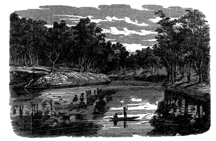 Junction of the Murrumbidgee with the Murray, Illustrated Australian News, 25 April 1863. (La Trobe Picture Collection, State Library of Victoria, Melbourne, Australia)