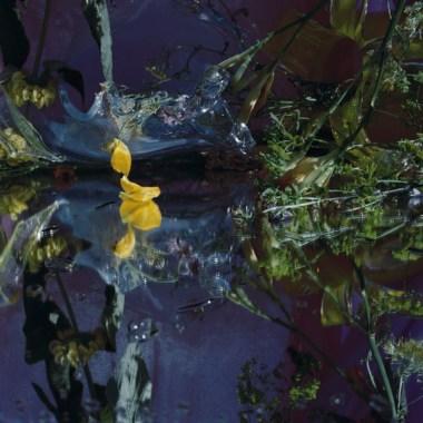 Margriet Smulders (2002) Luna 125 x 155 cm