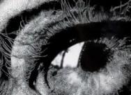 'Eyes', Edwynn Houk Zurich, June 9 – July 28, 2012