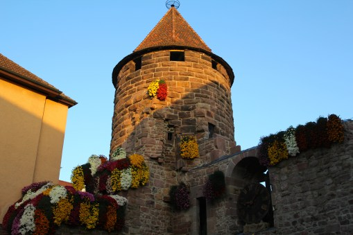 The only part left of Tiefburg castle, the prison tower