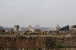 View of St. Peter's from the Roman Palatine