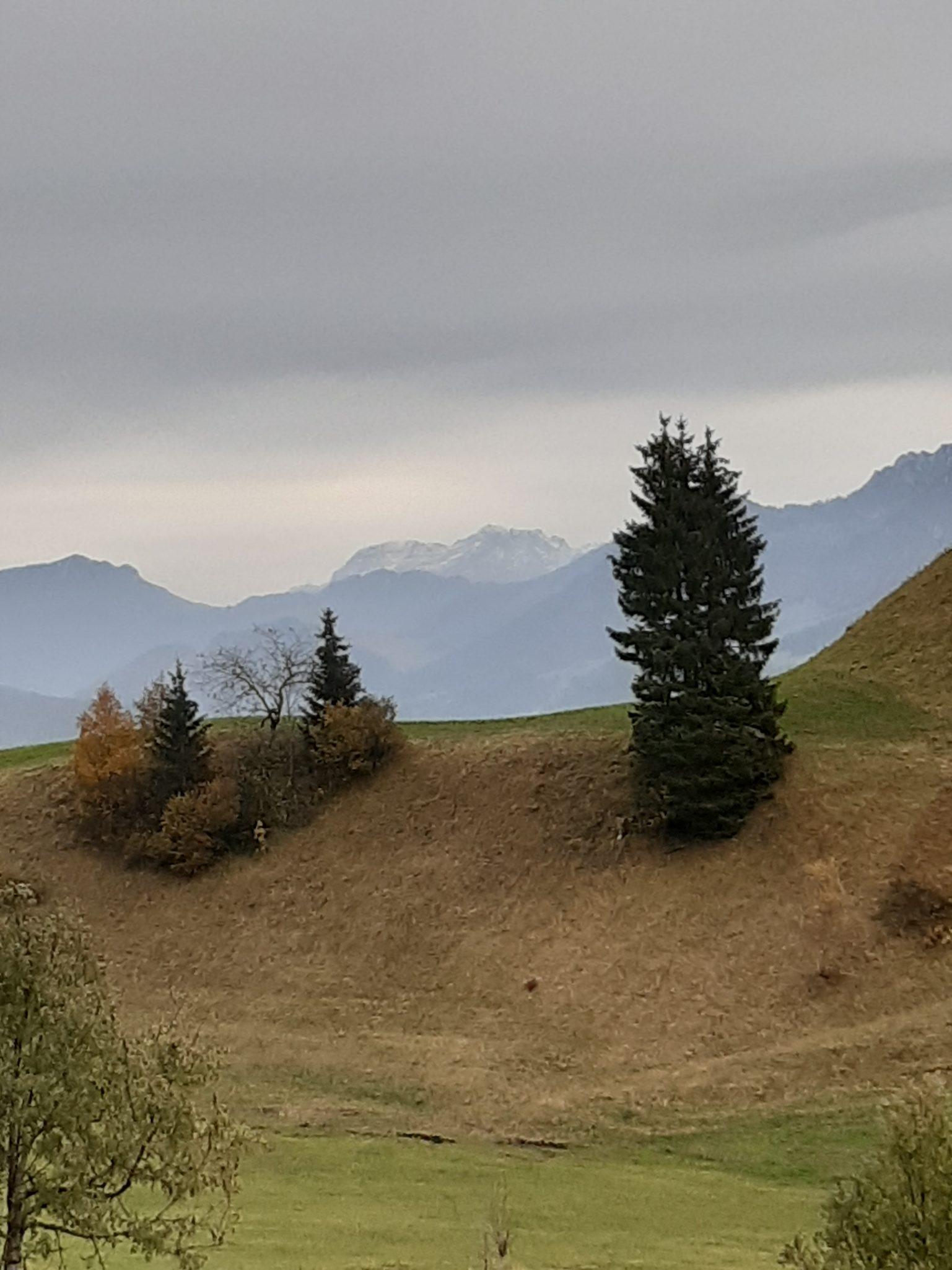 Aussicht Wiese Berge