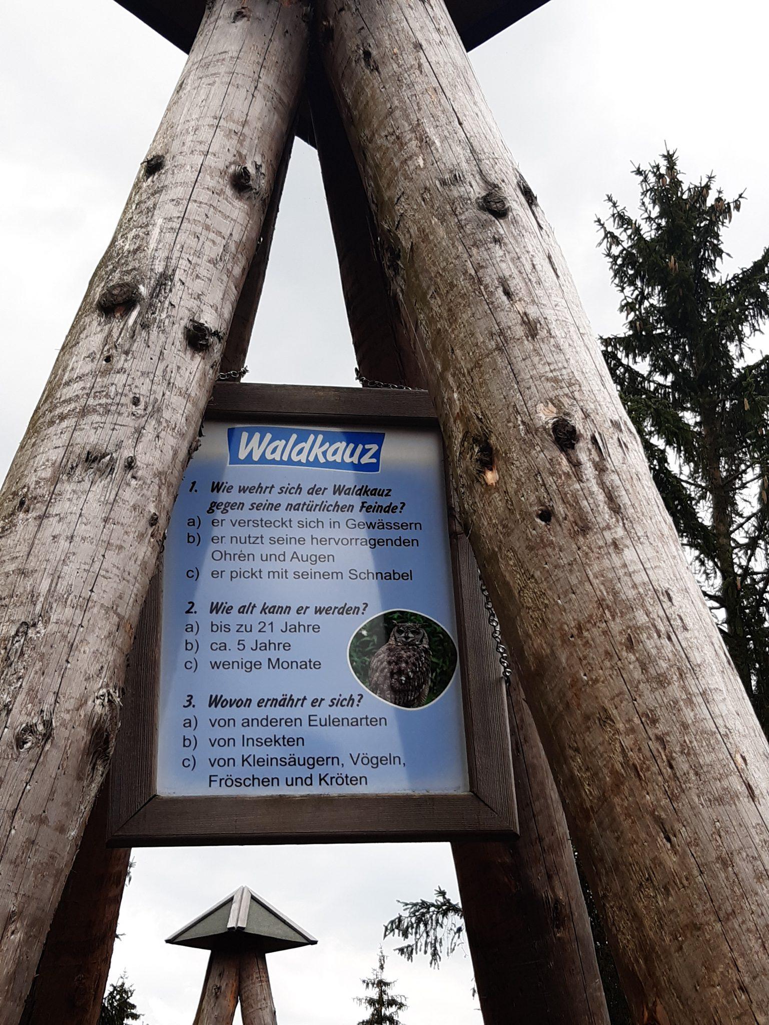 wo lebt der Waldkreuz