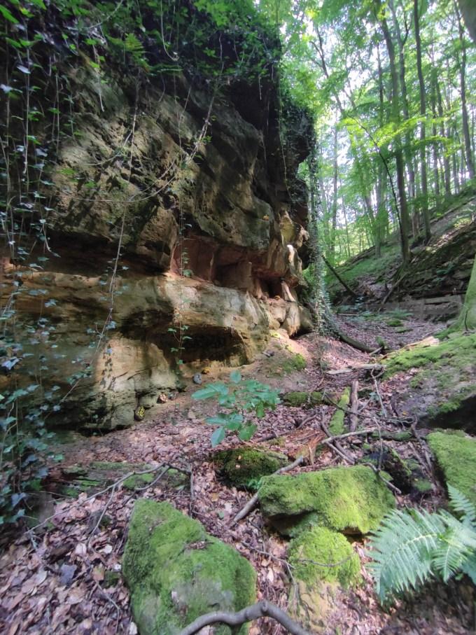 Seltenbachschlucht Klingenberg