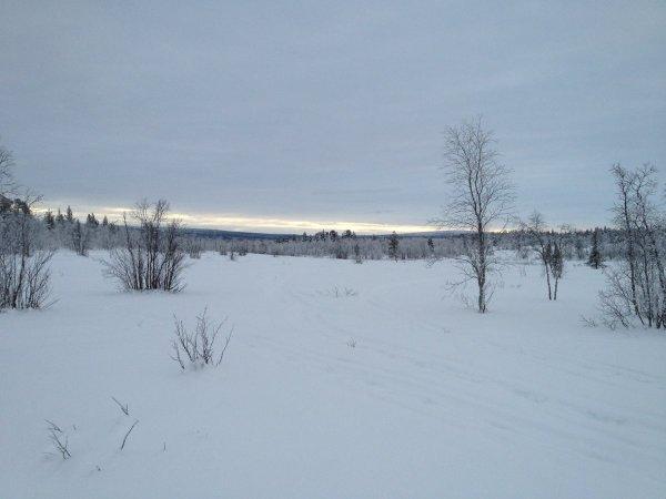 polar2013f