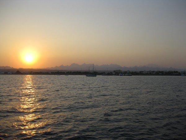 safaga2008a0865