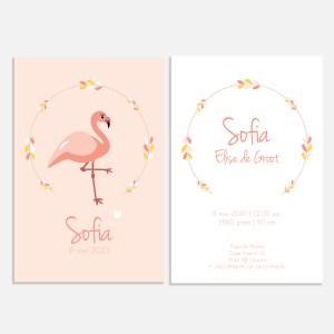 Een geboortekaartje met flamingo in de collectie jungle dieren. In wit met roze in 10x15.