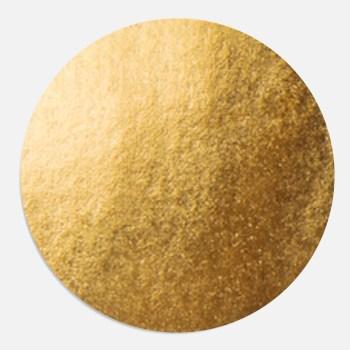 Goudfolie sluitzegel voor geboortekaartje. Een sluitsticker maakt het plaatje compleet.