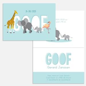 Met mijn diertjes kun je je geboortekaartje zelf ontwerpen. Je hebt keuze uit jungle dieren, bosdieren, zeedieren. Van alpaca tot tijger.
