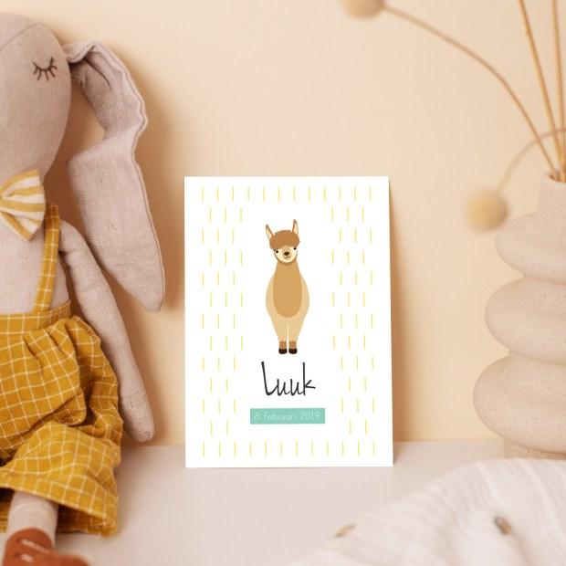 geboortekaartje jongen alpaca lama ontwerp door lindy