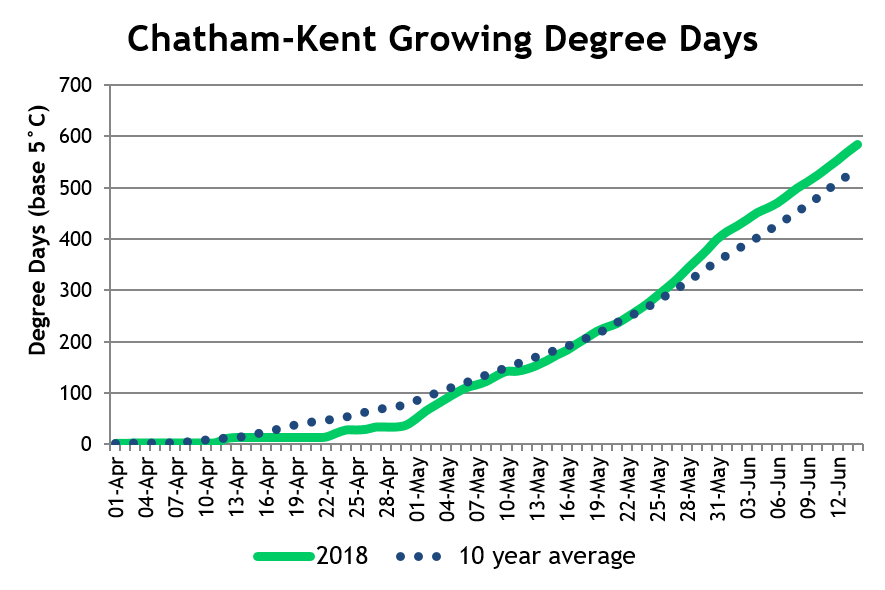 Chatham-KentDD June18