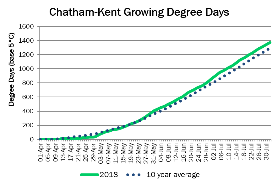Chatham-KentDD August1
