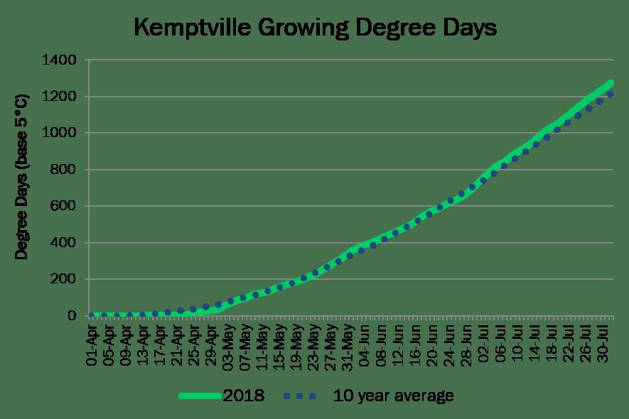 KemptvilleDD August1