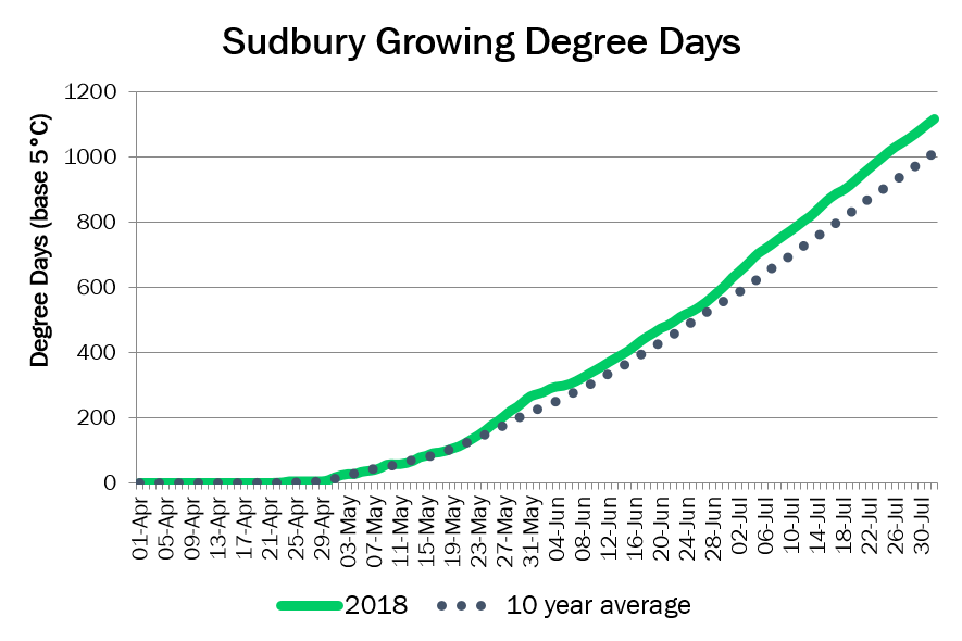 SudburyDD August1
