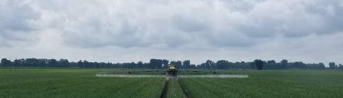 Pull behind type field sprayer spraying pesticides in an onion field