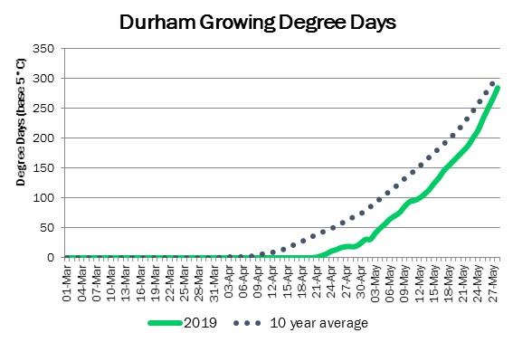 DurhamDDMay29