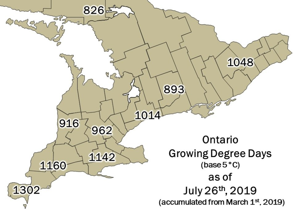 Ontario DD Map - July 26