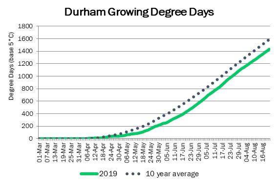 DurhamDDAugust22
