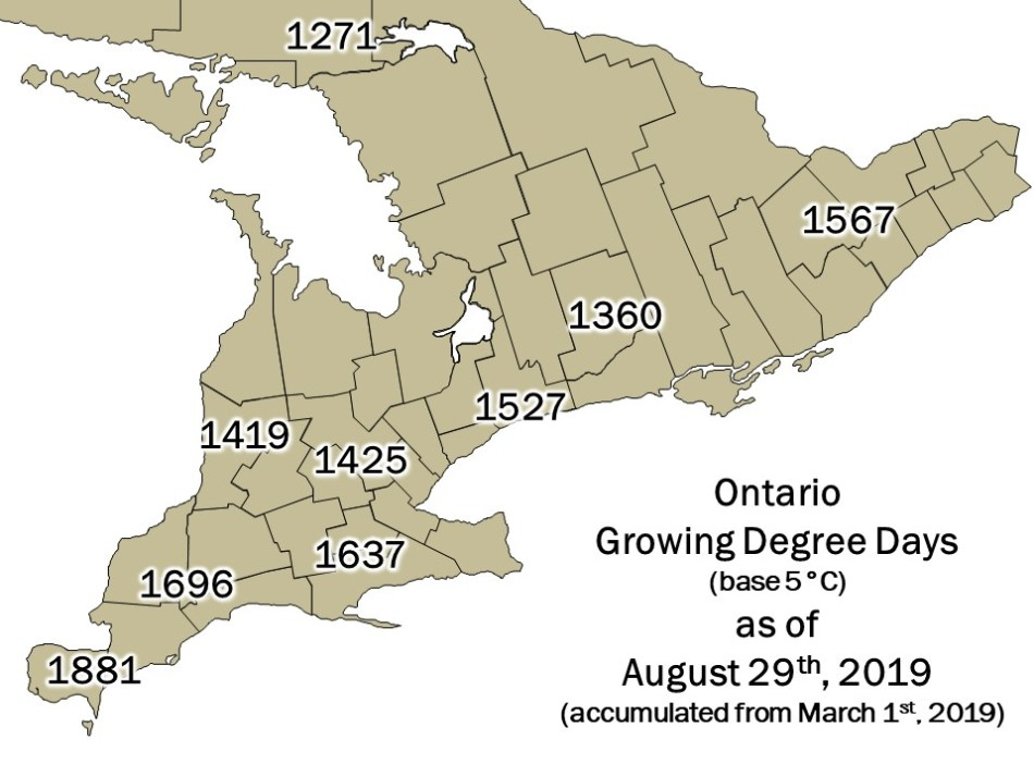 Ontario DD Map - August 29