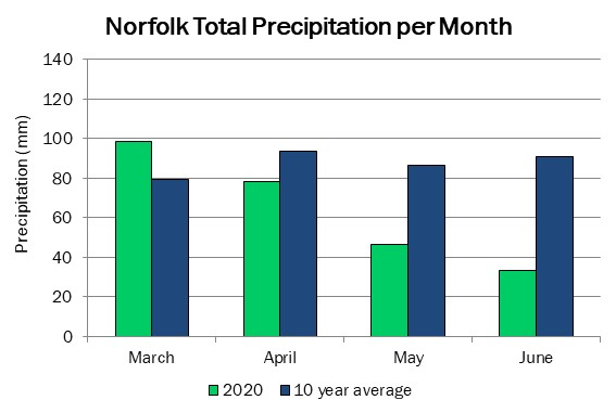 norfolk_precip_jun24