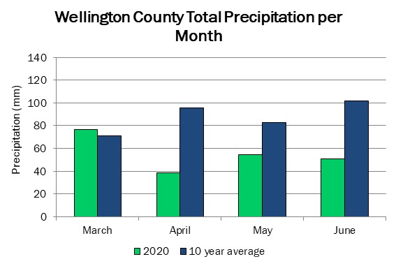 wellington_precip_jun24