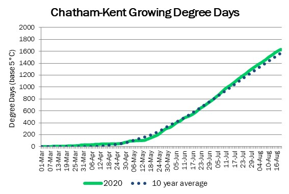 chatham_GDD_aug20