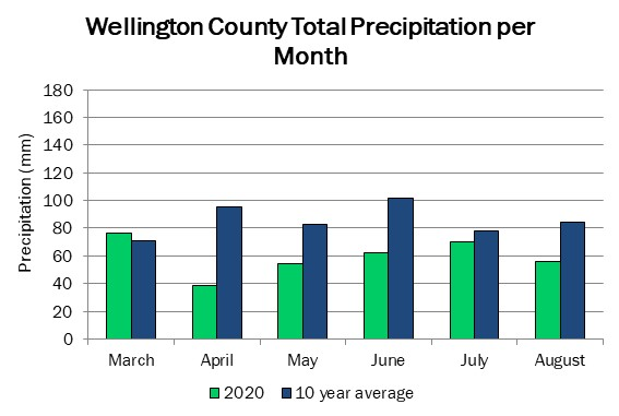 wellington_precip_aug13