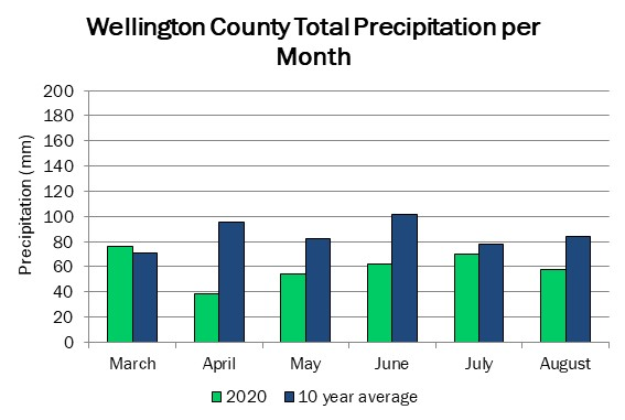 wellington_precip_aug20