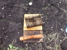 Disassembled Boivin weevil trap. A base, top, middle section with wooden slats, carrot piece, flag and rubber band