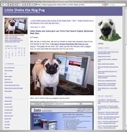 Sheba the Hug Pug's main blog