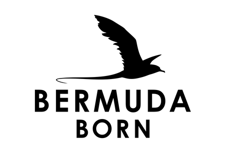 Bermuda Born luxury affordable leather handbags, Onwards and Up London