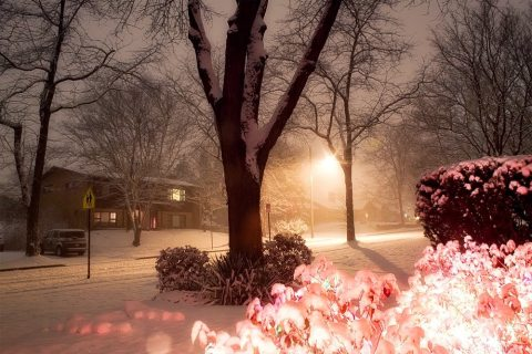 This picture was taken last night by Penn State staff member Nick Sloff and posted on his photography blog.