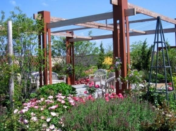 img_3913_arboretum