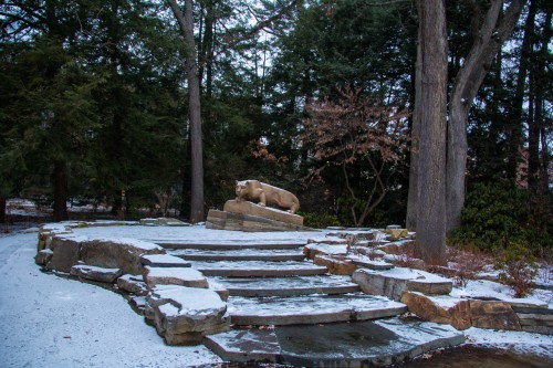 Lion Shrine_Stock_Snow_Morton Lin-5055