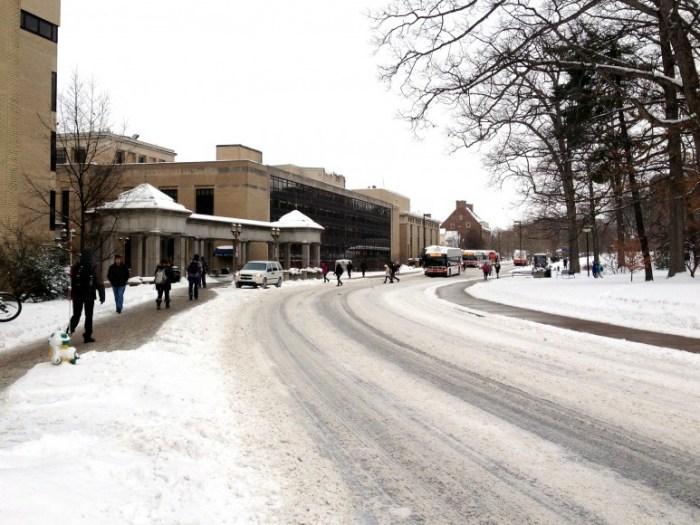 Library Snow Stock