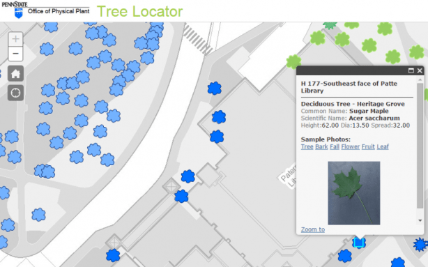 library tree map