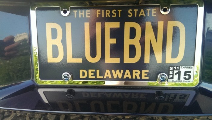 blue band plate 2