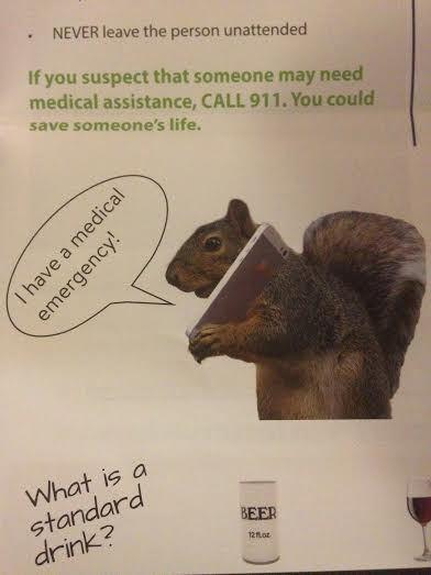 party squirrel 911
